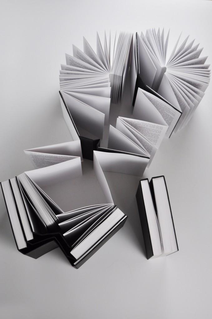 LDDPR accordéons 2_red
